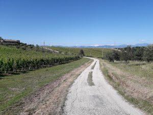 Pasta Trekking: dalle colline alle tagliatelle