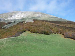 Foliage e vetta del Monte Catria