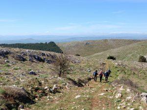 Cammino dell'Alta Murgia
