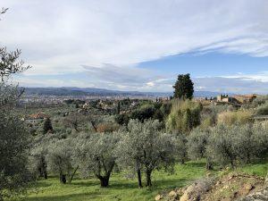 Immagine Settignano