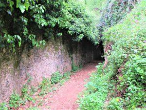 Camminata lungo le antiche mura di Massa e visita al Castello Malaspina