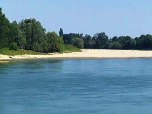 Hai mai passeggiato su un'isola in mezzo al PO?